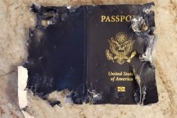 My Dog Ate My Passport